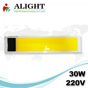 COB 30W 220V AC rectángulo LED