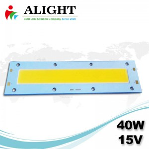 40w 15v Rectangle DC COB LED