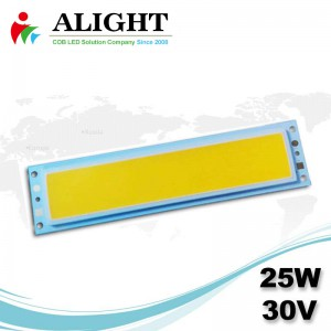 25W 30V Rectangle DC COB LED