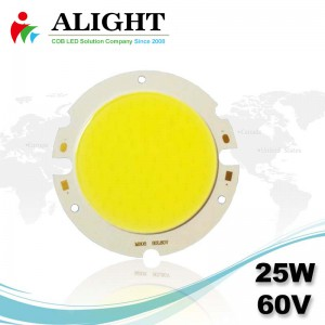 25W 60V Round DC COB LED