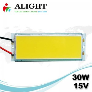 30W 15V Rectangle DC COB LED