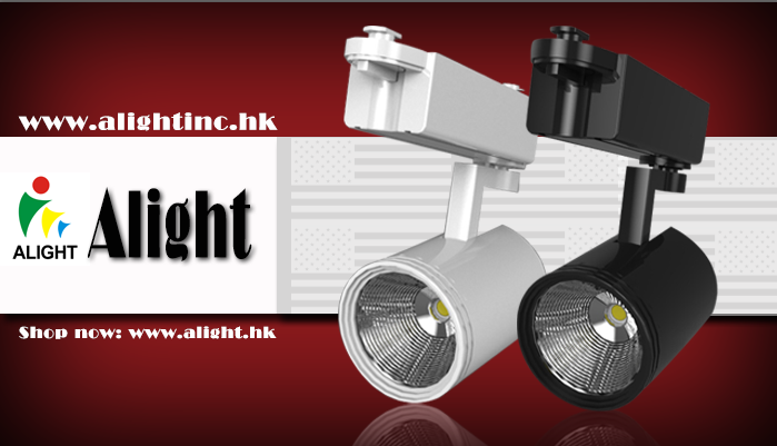 20W COB LED Track Light / Orientable